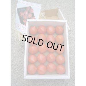 画像3: 果物の様な美味しいフルーツトマト 小箱1K入り【税込み・送料別】