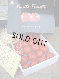 果物の様な美味しいフルーツトマト 小箱1K入り【税込み・送料別】