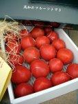 画像4: 果物の様な美味しいフルーツトマト 小箱1K入り【税込み・送料別】 (4)