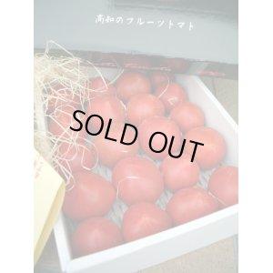 画像4: 果物の様な美味しいフルーツトマト 小箱1K入り【税込み・送料別】